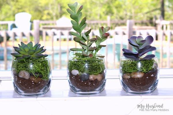 Faux Succulent Planter 5