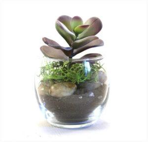 Faux Succulent Planter Main